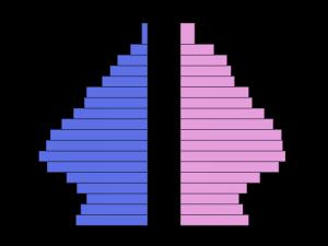 Piradem - Imagen de ejemplo
